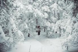 Зюраткуль зимой_4